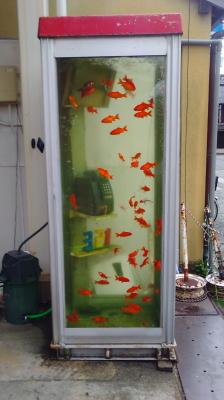 ②水槽・電話ボックス
